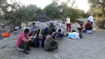 Çanakkale'de 42 Düzensiz Göçmen Yakalandı