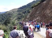 ERICEK - Giresun'da Trafik Kazası Açıklaması 5 Ölü, 8 Yaralı