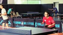 MASA TENİSİ - Masa Tenisinde Avrupa Şampiyonası Hazırlıkları
