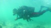VAN GÖLÜ - Van Gölü'nün Derinliklerindeki Yerleşim Kalıntıları Gün Yüzüne Çıkartılıyor
