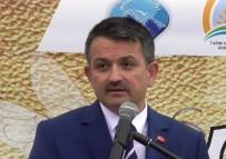 ADNAN MENDERES ÜNIVERSITESI - Bakan Pakdemirli, Ege Ziraat Odası Başkanlarıyla Aydın'da Buluşacak