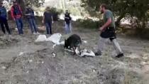 Diyarbakır'da 817 Kilogram Esrar Ele Geçirildi