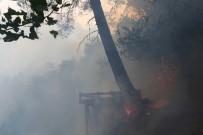 İŞ MAKİNASI - Hatay'daki Yangında 40 Hektarlık Orman Alanı Zarar Gördü