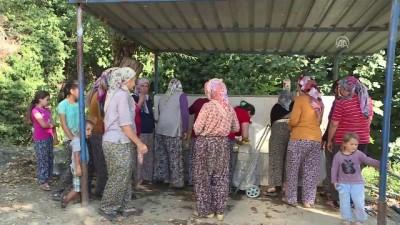 İzmir'in 'Susuz Mahallesinde' eşeklerle su taşınıyor