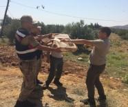 TRAFİK KANUNU - Saka Kuşu Yakalayan Suriyelilere Suçüstü