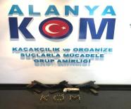 SUÇ ÖRGÜTÜ - Silahlı Suç Örgütü Operasyonu Açıklaması 8 Gözaltı
