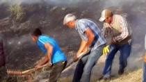 AĞRı DAĞı - Ağrı Dağı'nda Örtü Yangını