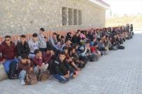 Başkale'de 118 Kaçak Göçmen Yakalandı