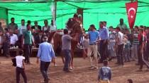 ABDULLAH AVCı - Hasköy'de Mahalli At Yarışları Yapıldı
