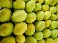 Meyve Sebze Ve Mamulleri İhracatı 8 Ayda 2,4 Milyar Dolara Ulaştı
