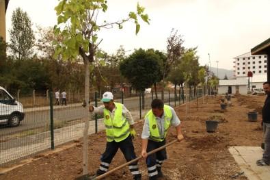 Millet Bahçesi'ne 2 Bin Ağaç Dikilecek