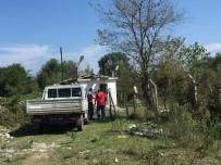 SOKAK KÖPEĞİ - Sokak Köpeği Vurularak Öldürüldü