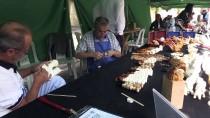 EL SANATLARI - Ulusal Odunpazarı Lüle Taşı Festivali