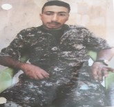 TARIM İŞÇİSİ - YPG'li Terörist Kardeşler Tarlada Çalışırken Yakalandı