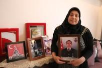 ZEYTIN DALı - Afrin Şehidinin Annesi Açıklaması 'Devlet Teröristleri Beslemesin, İdam Etsin'