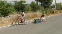 DAMACANA - Antalya'da Bir Mahallede 2 Aydır İçme Suyu Sıkıntısı Yaşanıyor