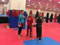 ALTIN MADALYA - Balıkesirli Bayan Kick Bokscular Altın Madalya Peşinde