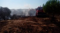 ALTıNKUM - Didim'de Makilik Yangını Korkuttu