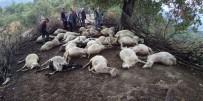 PAMUKÖREN - Düşen yıldırım 39 hayvanı telef etti