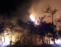 İŞ MAKİNESİ - Muğla'da orman yangını