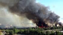 İTFAİYE ARACI - Muğla'da Kağıt Fabrikasında Çıkan Yangın Söndürüldü