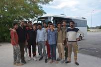 Pakistanlı Kaçakları İstanbul Diye Sinop'a Bıraktılar