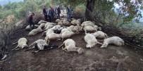 PAMUKÖREN - Yıldırım 39 Hayvanı Telef Etti