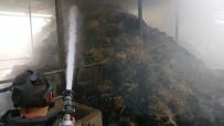 BÜYÜKBAŞ HAYVANLAR - Ahırda Yangın Çıktı; 1 Büyükbaş Hayvan Telef Oldu