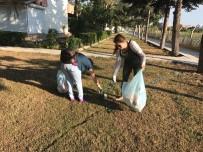 ZEYTINLI - AK Parti'li Kadınlardan Çöp Toplama Etkinliği