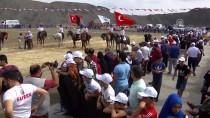 SULTANGAZİ BELEDİYESİ - Atlar Cirit Müsabakaları İçin Şahlandı