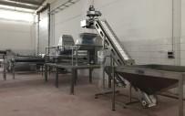Burhaniye Zeytincilik OSB'de İlk Fabrika Kuruldu