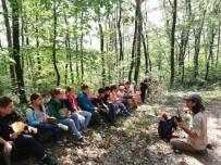 Doğa Kaşifleri Ormanya'da Buluştu