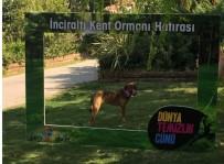 KARŞIYAKA - İzmir'i Temizleyen Ekibe Sevimli Köpekten Yardım