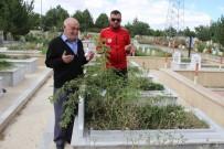CENNET - 51 Yıl Önce Maçta Ölen Sivasspor Taraftarları Unutulmadı