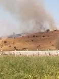 İTFAİYE ARACI - Aliağa'da Otluk Alanda Yangın