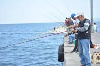 OLTA - Amatör Balıkçıların Bereketli Balık Avı