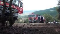 GÜNCELLEME - Kütahya'da Orman Yangını