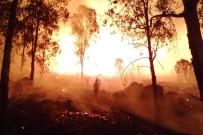 İŞ MAKİNASI - İzmir'de Korkutan Yangın