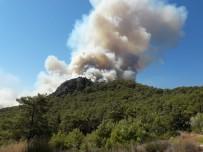 KARAÖZ - Kumluca'da ormanlık alanda yangın