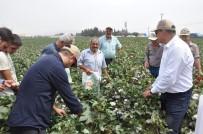 DOĞU AKDENİZ - MAY Tohum, Yeni Pamuk Çeşitlerini 'Bereket Şenliği'nde Çiftçilere Tanıttı