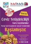 MEMDUH BÜYÜKKıLıÇ - Melikgazi Belediyesi 'Ceviz Yetiştiriciliği' Kursu Açtı