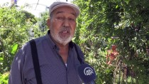 MEHMET DEMIR - Menderes'in Köyünde Bitmeyen Acı