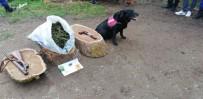 SENTETIK - Sakarya'da 7 Kilo 855 Gram Uyuşturucu Ele Geçirildi
