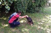 Tellere Sıkışan Yavru Köpeği İtfaiye Kurtardı