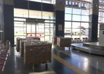 RIYAD - Turkish Cargo, Böğürtlen Taşıdı