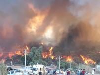 KARAÖZ - Yangının Dehşeti Fotoğraflara Yansıdı