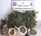 Bingöl'de 158 Kilo Uyuşturucu Ele Geçirildi