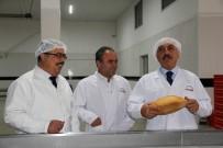 GIDA YARDIMI - Çorum'da Halk Ekmeğine Zam Yapılmayacak