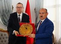 HASAR TESPİT - Kastamonu Valisi Yaşar Karadeniz