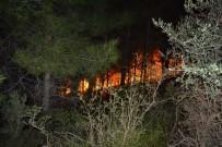 ORMAN İŞLETME MÜDÜRÜ - Kozan'da Orman Yangını